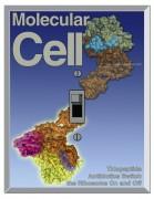 Hier ist ein 'Schalter' mit 'thiopeptid'-Antibiotika am Protein L7/12 gebunden dargestellt. Thiostrepton (cyan, oben) und Micrococcin fixieren die Bindung einer L7/12-C-Terminal-Domäne welche die Bindungseite für verschiedene Elongationsfaktoren vorbereitet.Cover Idee: J.M. Harms, Sean Connell and D.N. Wilson Illustration: J.M. Harms