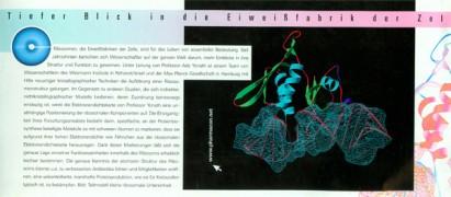 Das Protein S8 der kleinen ribosomalen Untereinheit (30S) bindet an einem Teil der 16S-RNA (mit Dichtenetz). Bil: H. Bartels, J.M. Harms